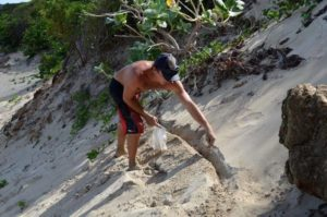 st barths beaches nature report