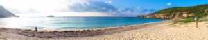 st barths saline beach report