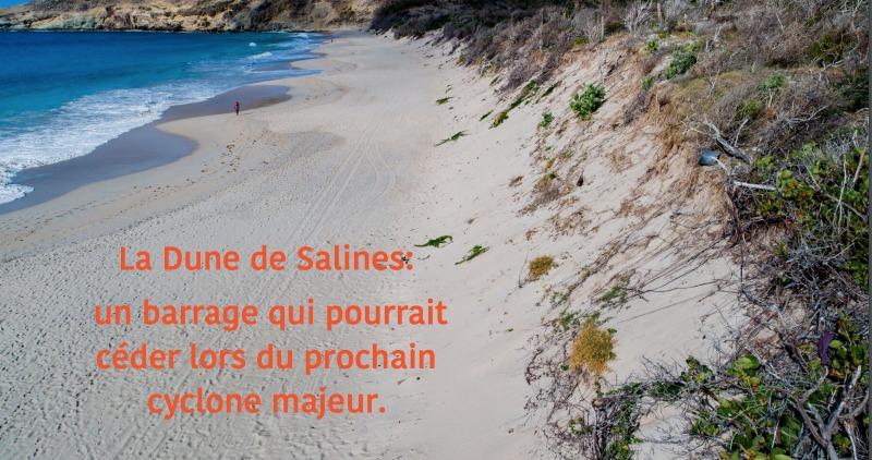 restauration de la dune de salines