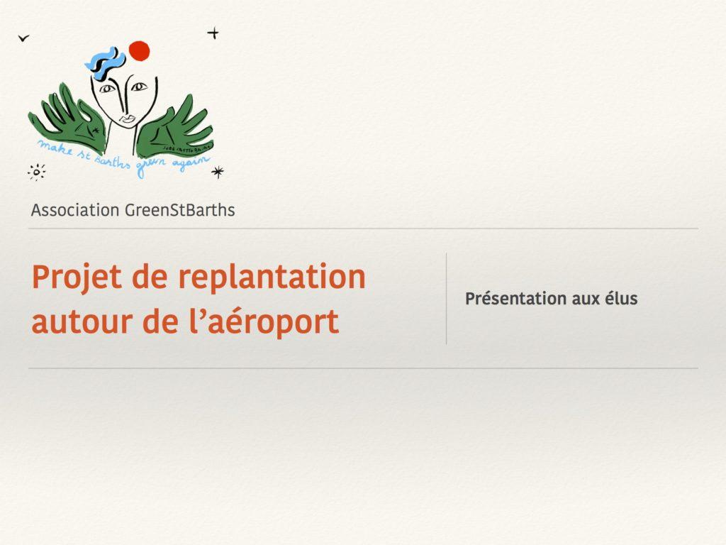 st barths airport greenstbarths